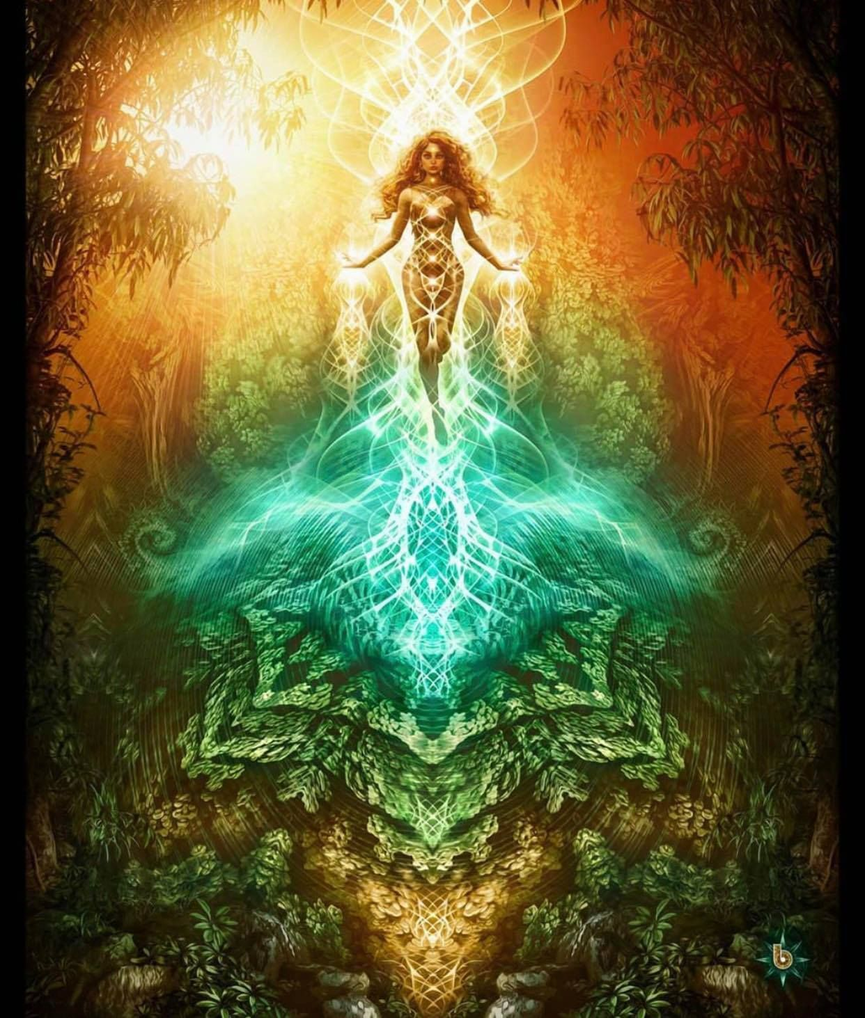 Ve světle vědomí